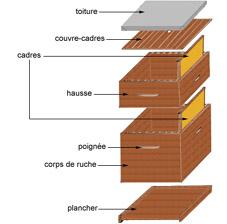 bees hamzaoui 45100 ftre. Black Bedroom Furniture Sets. Home Design Ideas